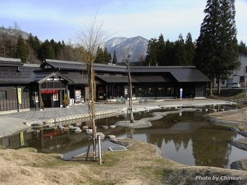 Mitsumata 20160406_01.JPG